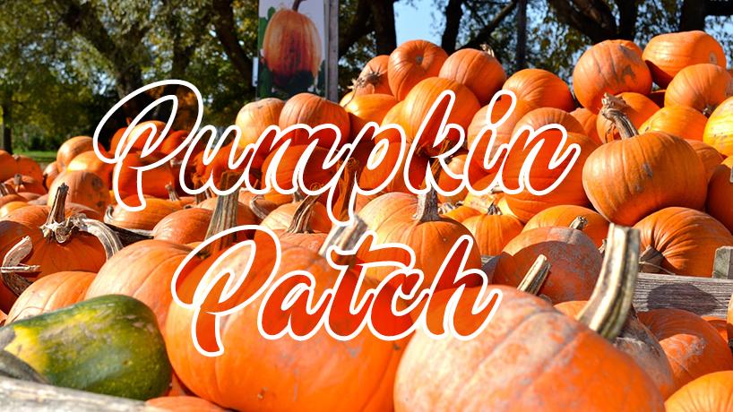2019 Pumpkin Patch Festival